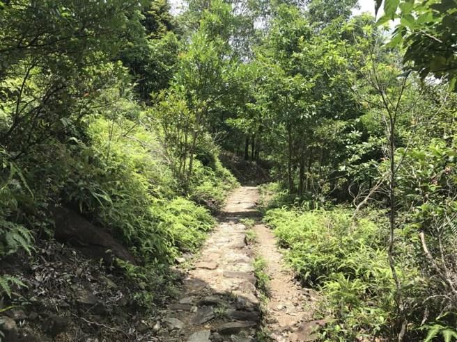 Hiking 9.7.17 Ngau Wu Tun (5)