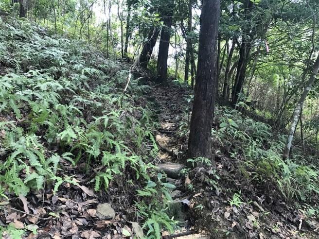 Hiking 9.7.17 Ngau Wu Tun (6)