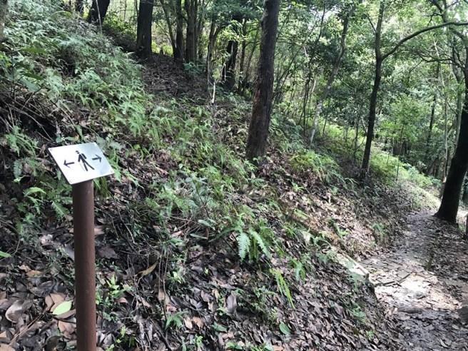 Hiking 9.7.17 Ngau Wu Tun (7)