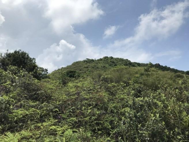 Hiking 5.8.2017 Sze Tei (23)
