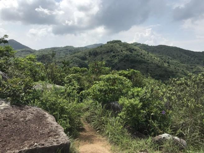 Hiking 5.8.2017 Sze Tei (31)
