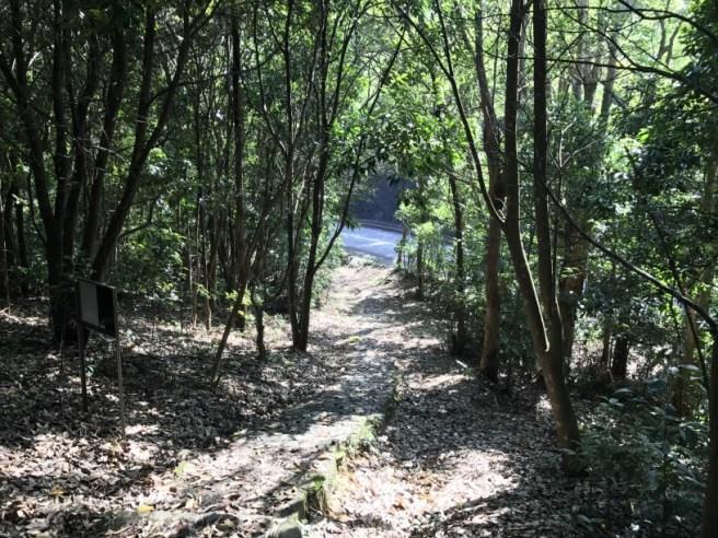Hiking 5.8.2017 Sze Tei (49)