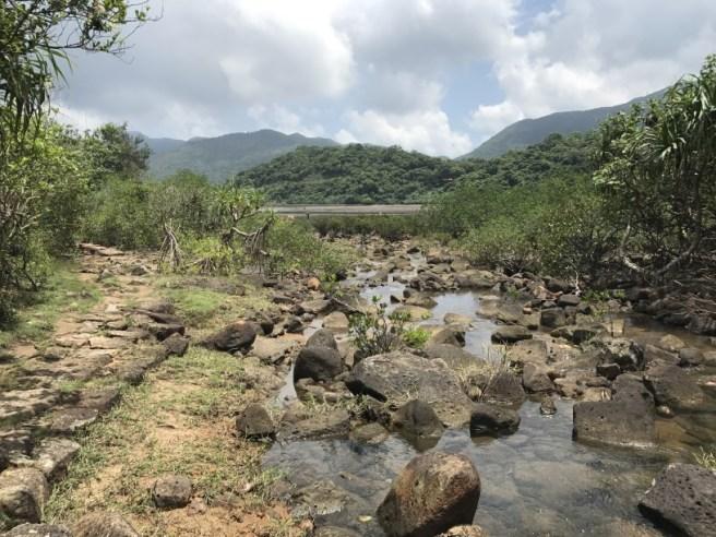 Hiking 5.8.2017 Sze Tei (6)