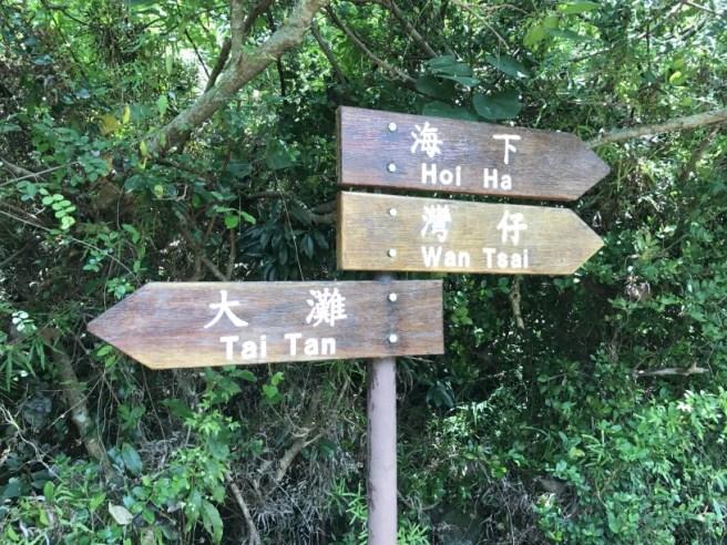 Hiking 5.8.2017 Sze Tei (8)