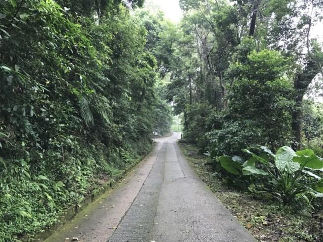 Hiking 23.9.17 Tai Po Kau Fire lookout (1)