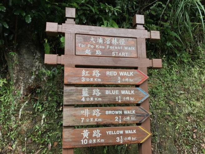 Hiking 23.9.17 Tai Po Kau Fire lookout (2)