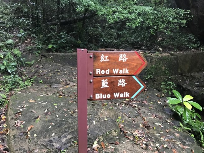 Hiking 23.9.17 Tai Po Kau Fire lookout (3)