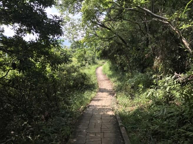Hiking 23.9.17 Tai Po Kau Fire lookout (42)