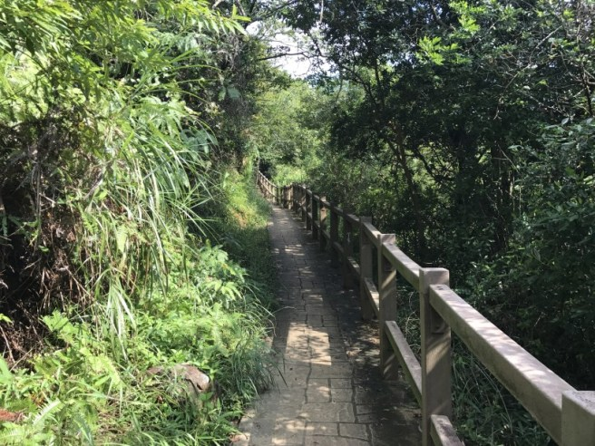 Hiking 23.9.17 Tai Po Kau Fire lookout (46)