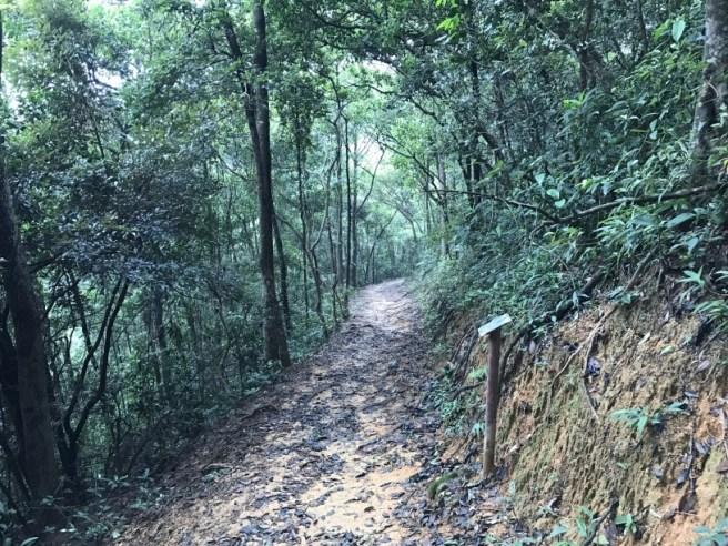Hiking 3.9.17 Kowloon Reservoir (26)