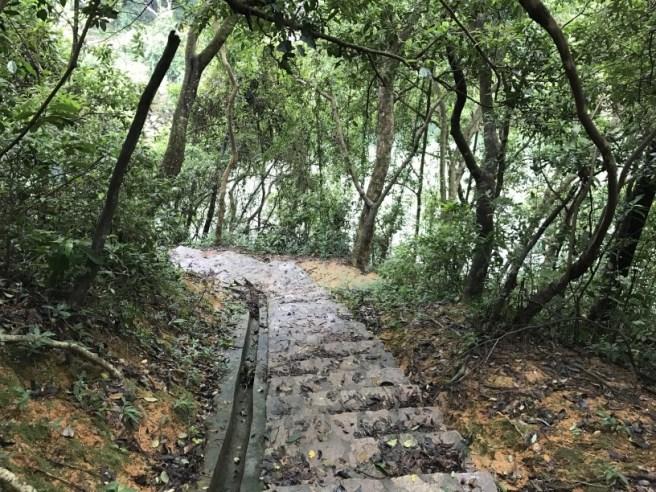 Hiking 3.9.17 Kowloon Reservoir (27)
