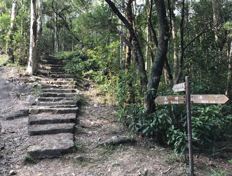 Hiking 11.11.2017 Lo Fu Kei Shek (1)