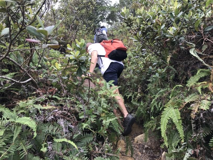 Hiking 11.11.2017 Lo Fu Kei Shek (14)