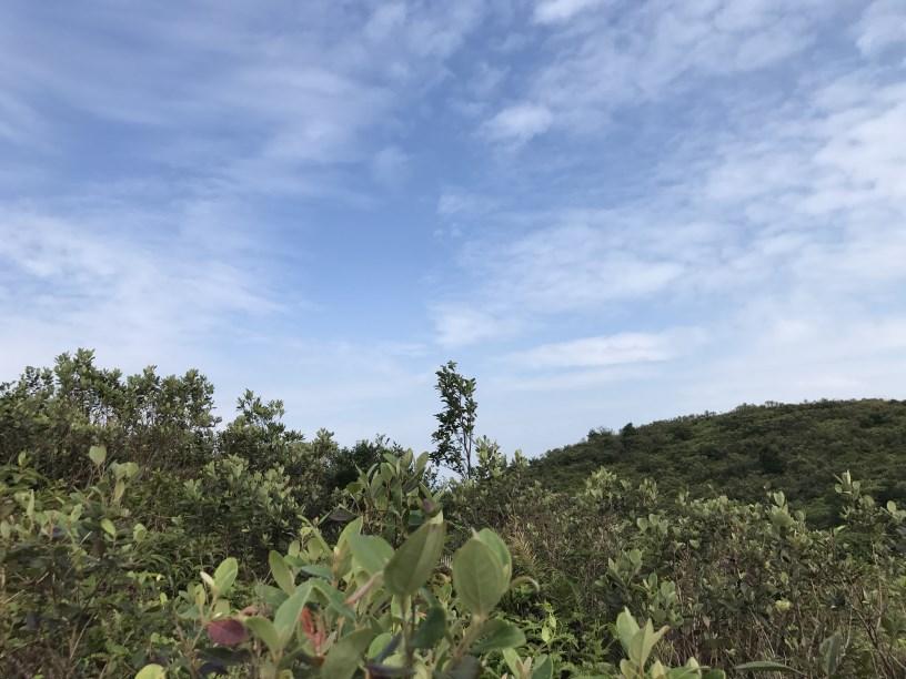 Hiking 11.11.2017 Lo Fu Kei Shek (35)