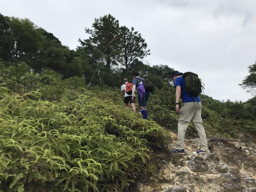 Hiking 11.11.2017 Lo Fu Kei Shek (46)