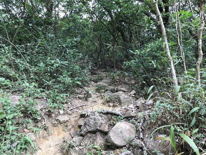 Hiking 26.11.2017 Kowloon Peak (3)