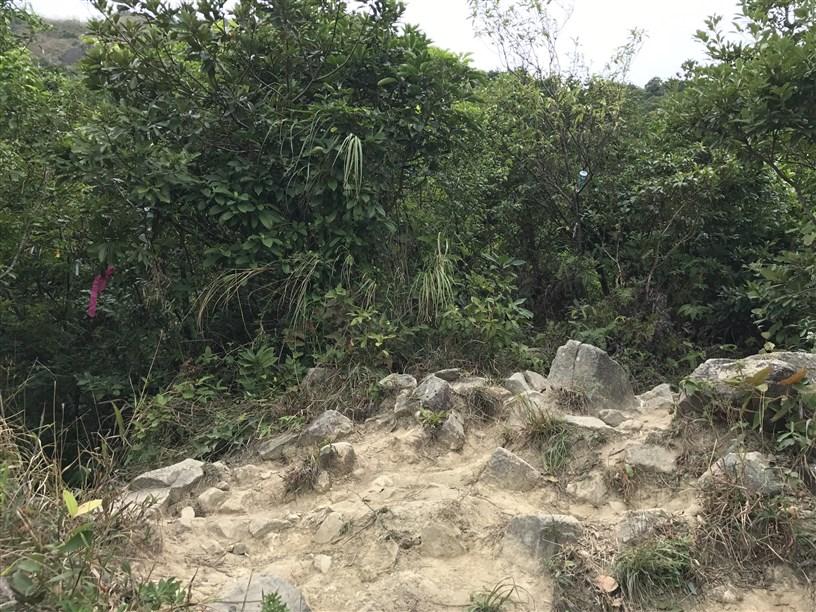 Hiking 26.11.2017 Kowloon Peak (6)