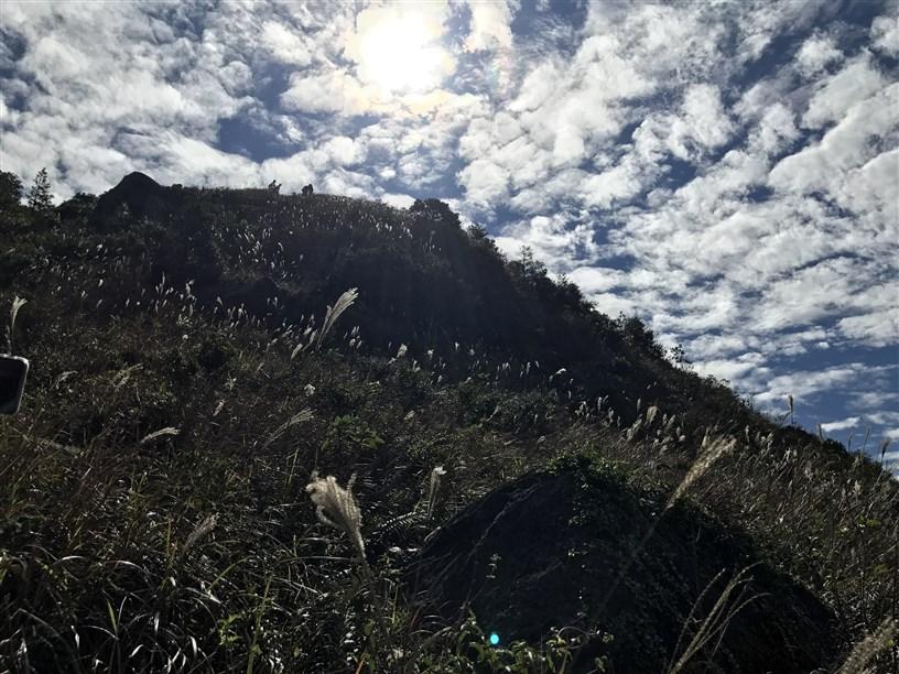 Hiking 26.11.2017 Kowloon Peak (63)