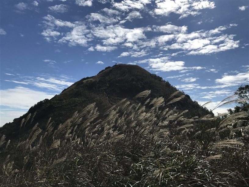 Hiking 26.11.2017 Kowloon Peak (64)