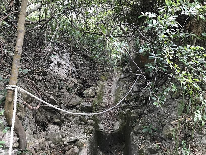 Hiking 26.11.2017 Kowloon Peak (74).JPG