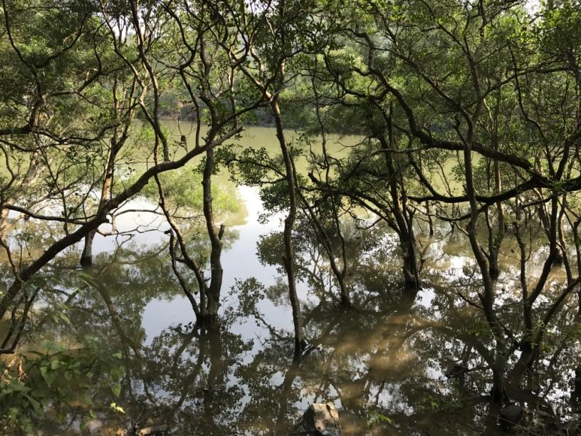 Hiking 6.12.2017 Shek Pan Tam (3)
