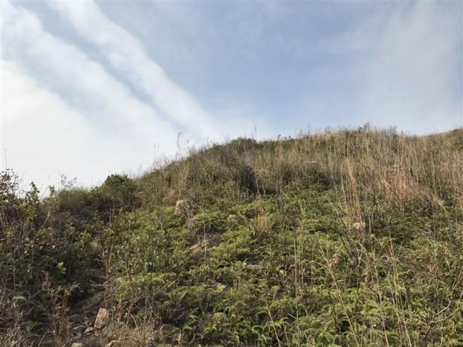 Hiking 11.2.18 Kwai Tau Leng (15)