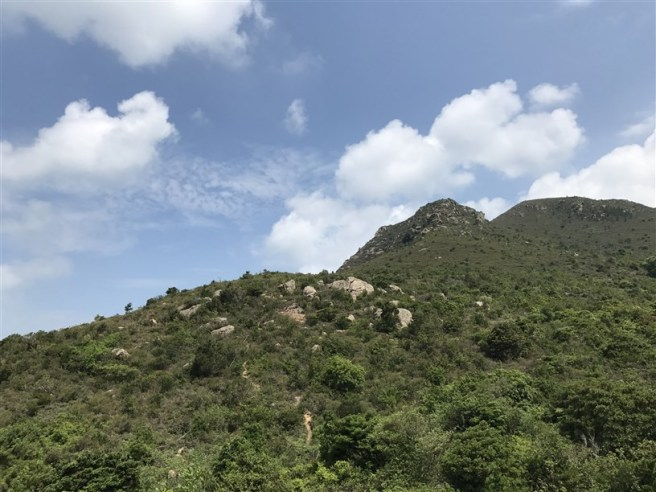 Hiking 29.4.18 Sze Shan Cheung Shan (10)
