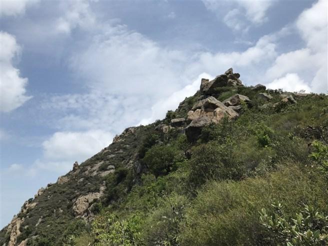 Hiking 29.4.18 Sze Shan Cheung Shan (19)