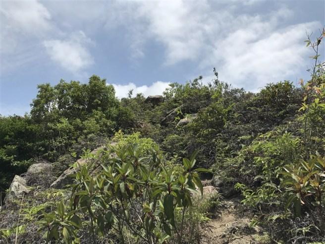 Hiking 29.4.18 Sze Shan Cheung Shan (24)