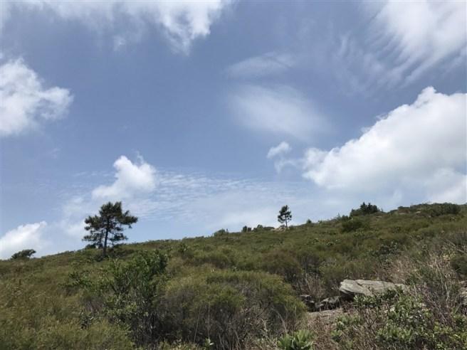 Hiking 29.4.18 Sze Shan Cheung Shan (35)