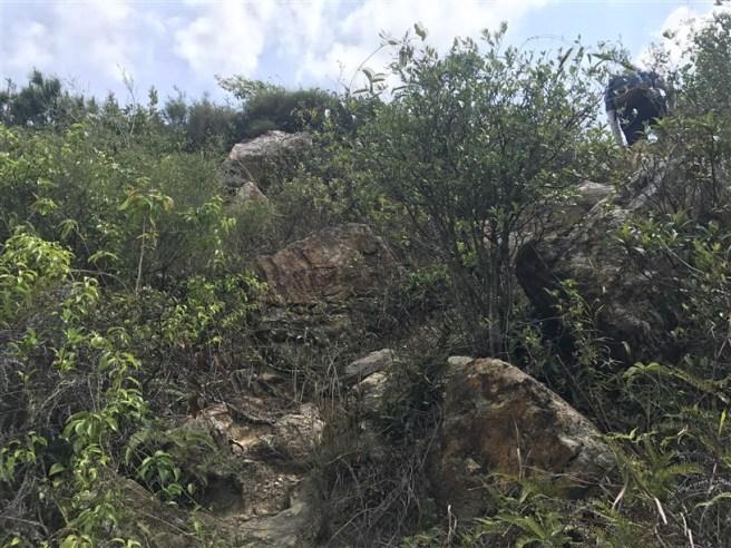 Hiking 29.4.18 Sze Shan Cheung Shan (4)