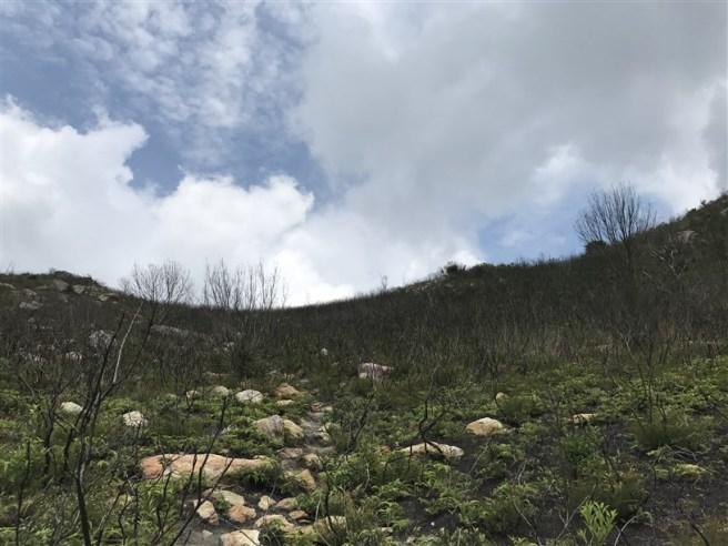 Hiking 29.4.18 Sze Shan Cheung Shan (42)