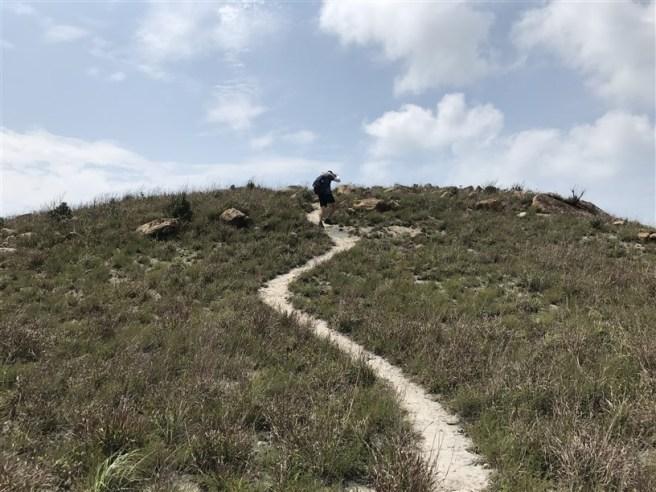 Hiking 29.4.18 Sze Shan Cheung Shan (51)