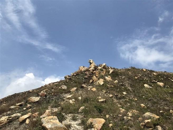 Hiking 29.4.18 Sze Shan Cheung Shan (61)