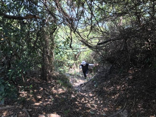 Hiking 31.3.2018 Yam O (46)