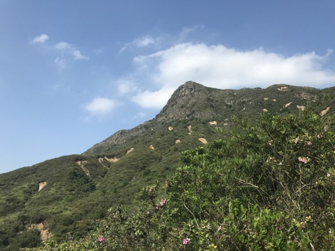 Hiking 13.5.18 Chin Kai Hoi On (54)