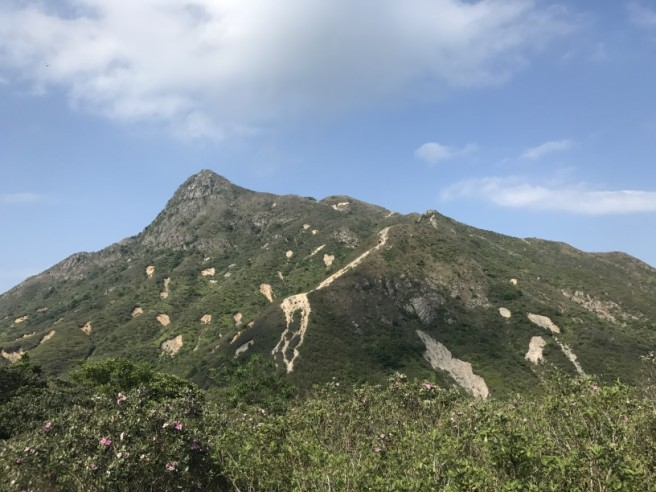 Hiking 13.5.18 Chin Kai Hoi On (55)