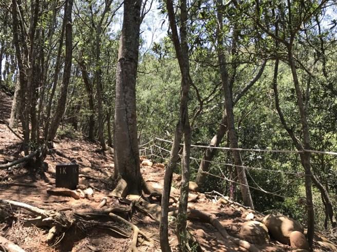 Hiking 16.6.2018 Huoyanshan (28)