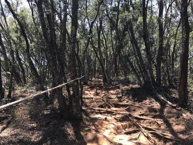 Hiking 16.6.2018 Huoyanshan (29)