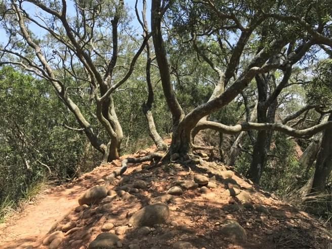 Hiking 16.6.2018 Huoyanshan (32)