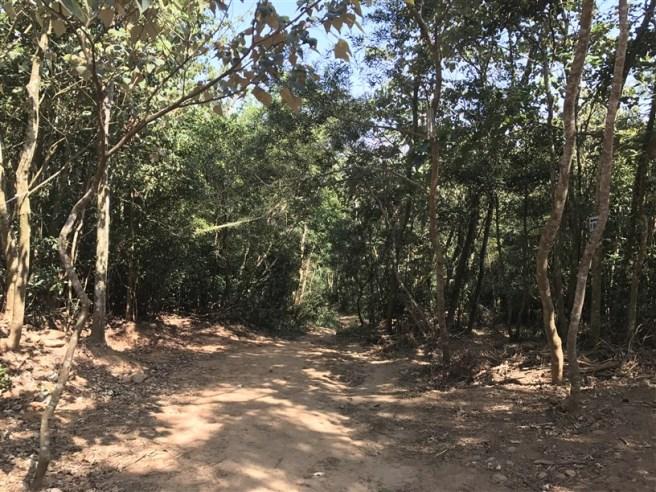 Hiking 16.6.2018 Huoyanshan (69)