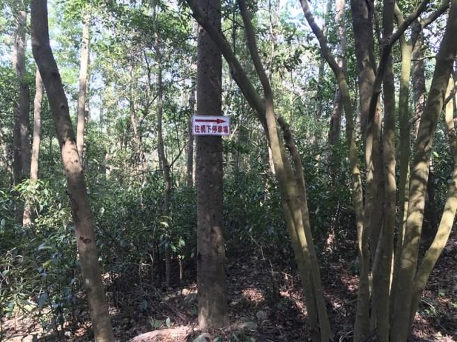Hiking 16.6.2018 Huoyanshan (70)