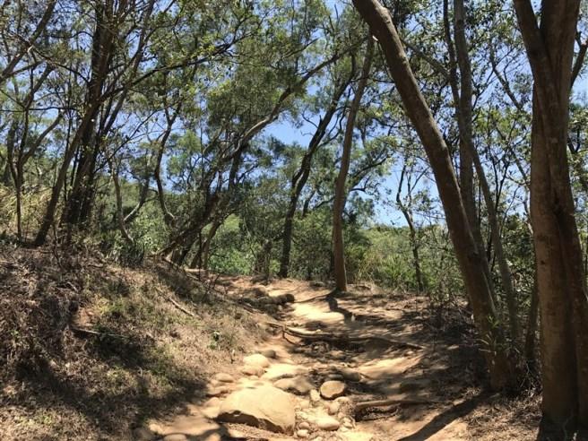 Hiking 16.6.2018 Huoyanshan (9)