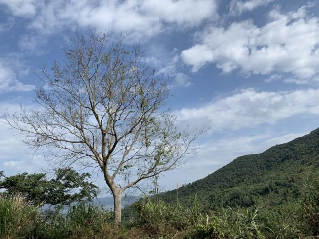 Hiking 16.2.2019 Kai Kung Shan (1)