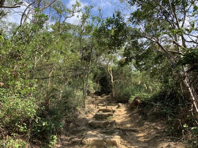 Hiking 16.2.2019 Kai Kung Shan (11)