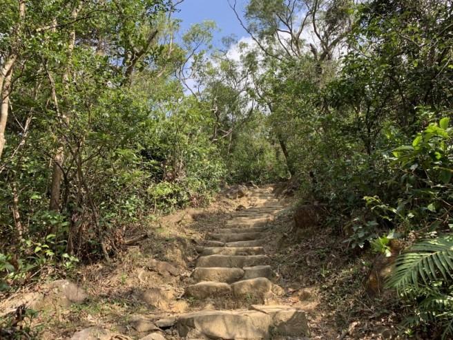 Hiking 16.2.2019 Kai Kung Shan (12)
