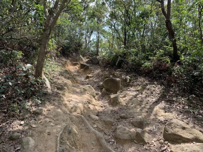 Hiking 16.2.2019 Kai Kung Shan (16)