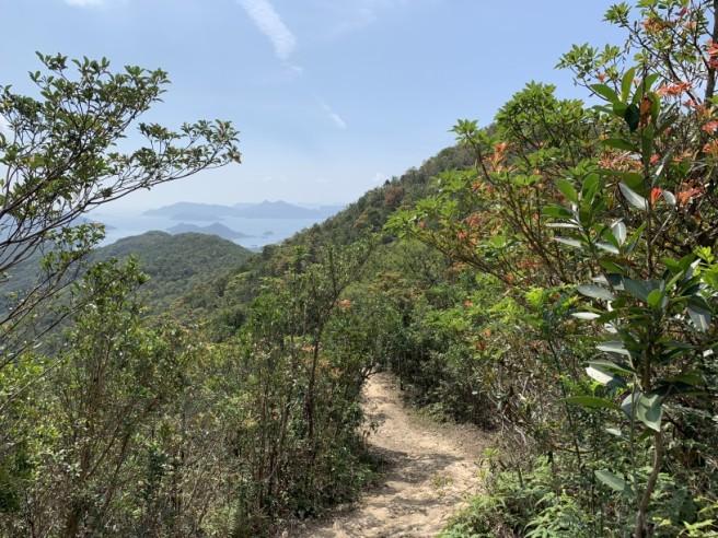 Hiking 16.2.2019 Kai Kung Shan (20)
