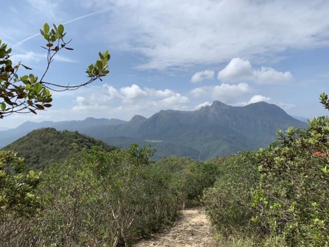 Hiking 16.2.2019 Kai Kung Shan (21)