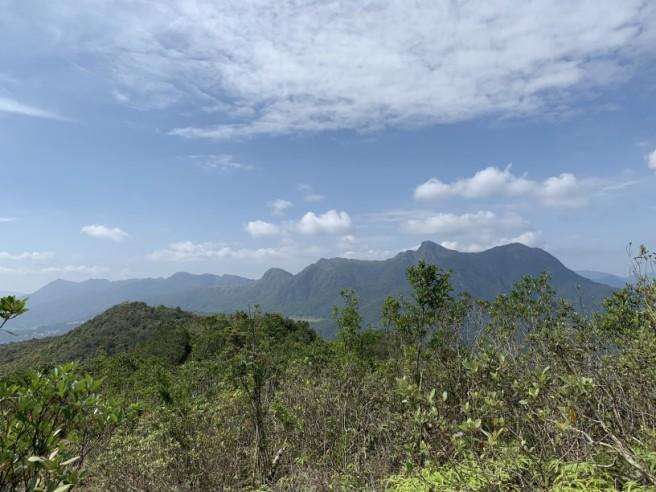 Hiking 16.2.2019 Kai Kung Shan (26)